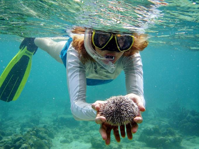 Нетронутые рифы делают Као Лак одним из лучших мест в Таиланде для сноркелинга.