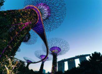 singapore-2259805_1280-1