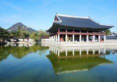 gyeongbok-palace-1263141_1280